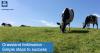 Grassland fertilisation 1200x630 2.png