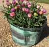 Copper planter  (2).JPG