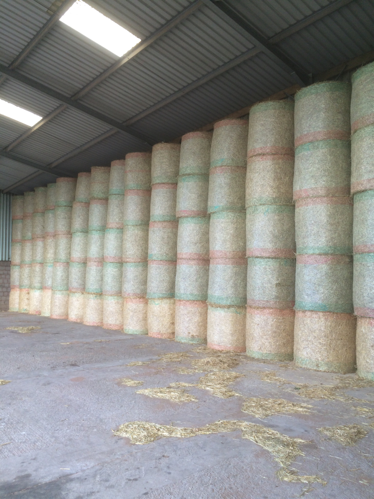 ImageUploadedByThe Farming Forum1436266427.589094.jpg
