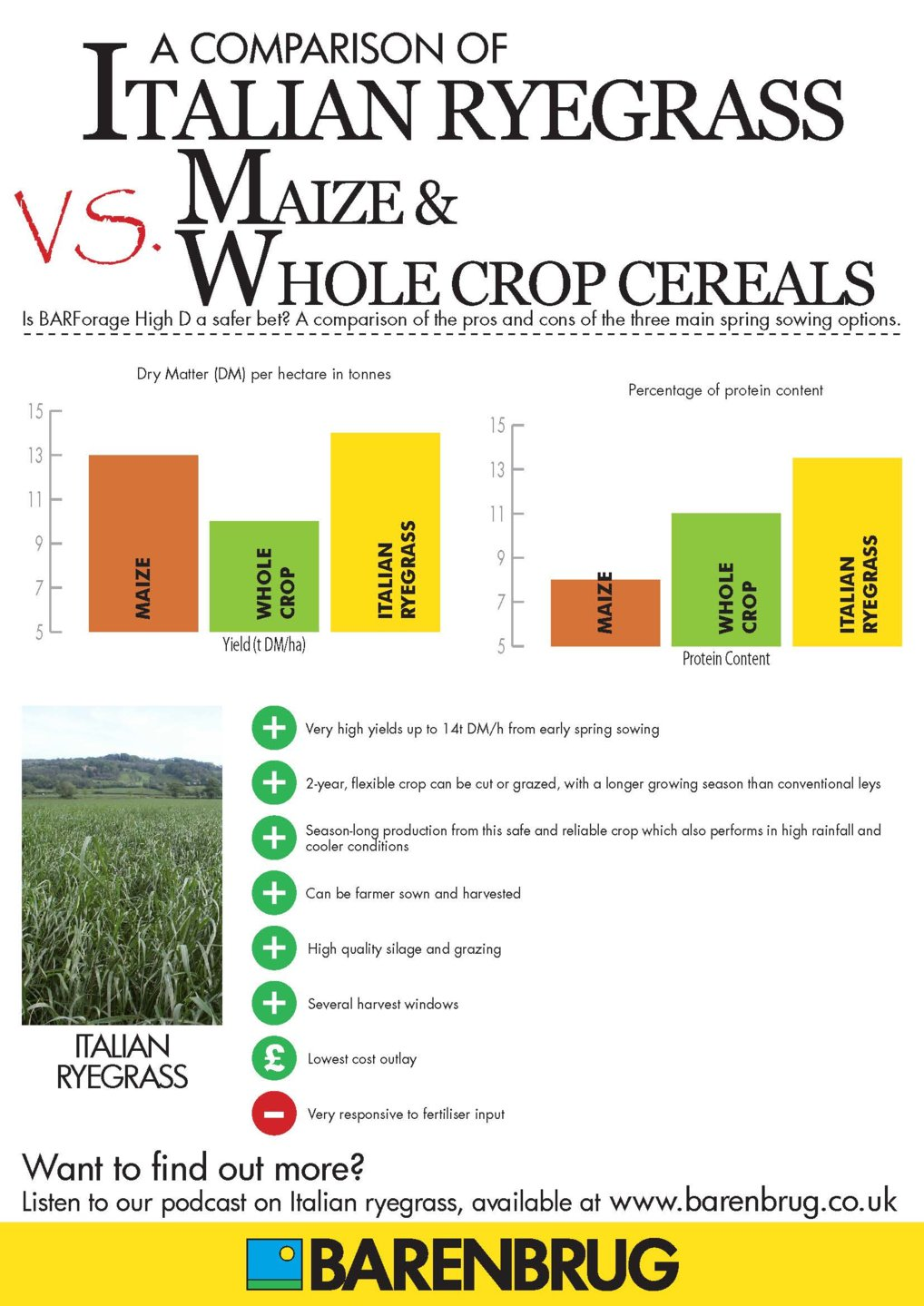 Maize_WholeCrop_Italian Infographic_Page_1.jpg