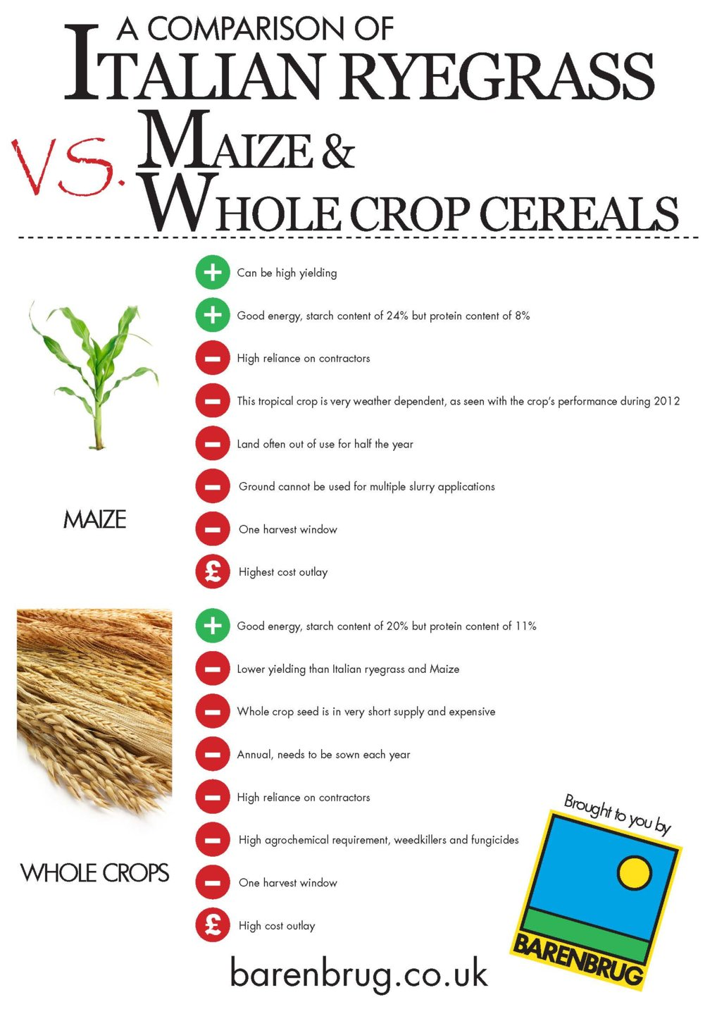 Maize_WholeCrop_Italian Infographic_Page_2.jpg