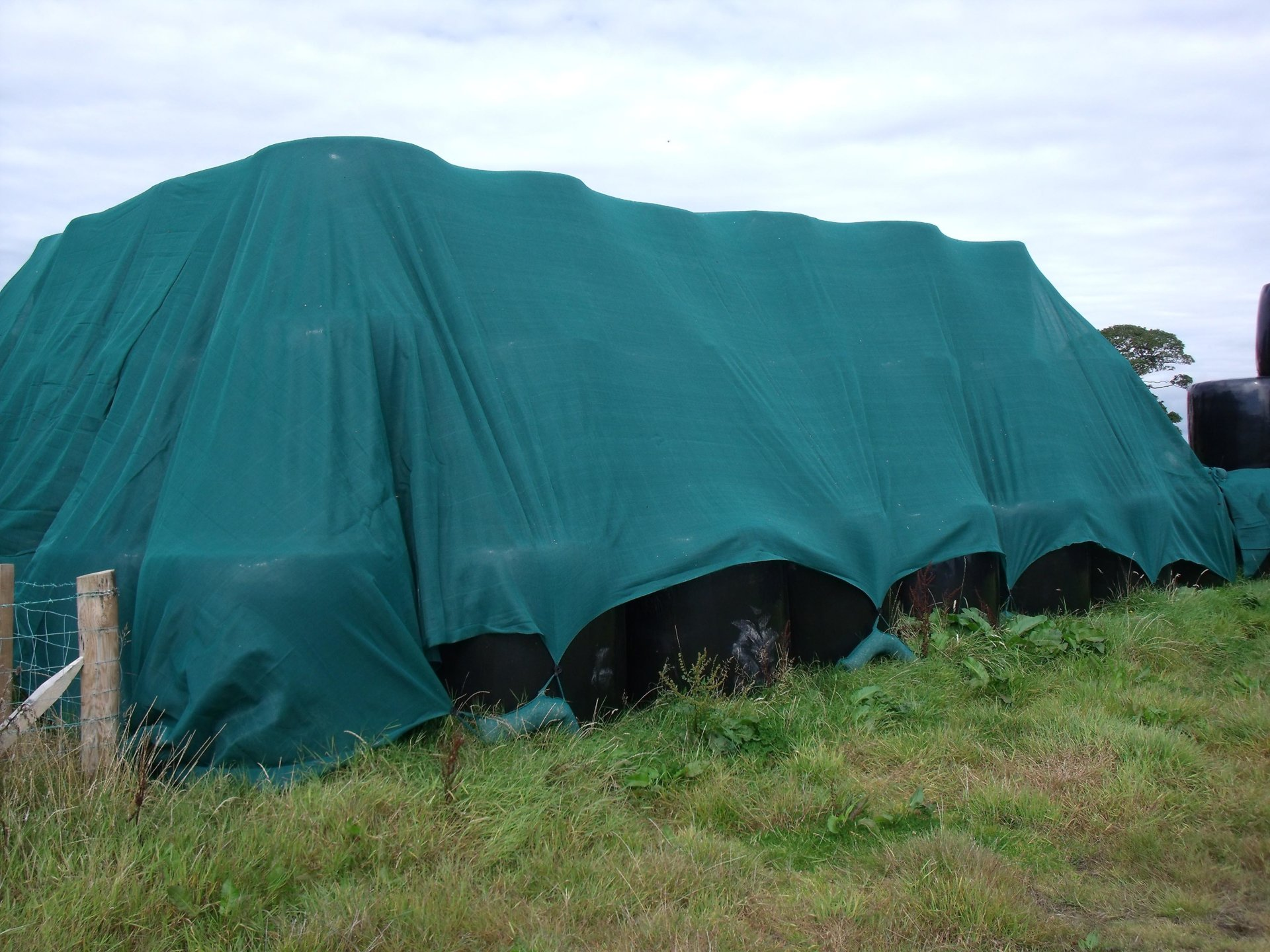 47 Big bale silage covered with SC.jpg
