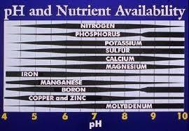 Soil pH & nutrient availability.jpg