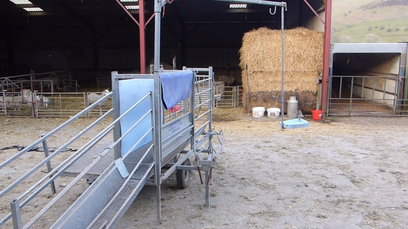 Harrington sheep handling trailer | The Farming Forum