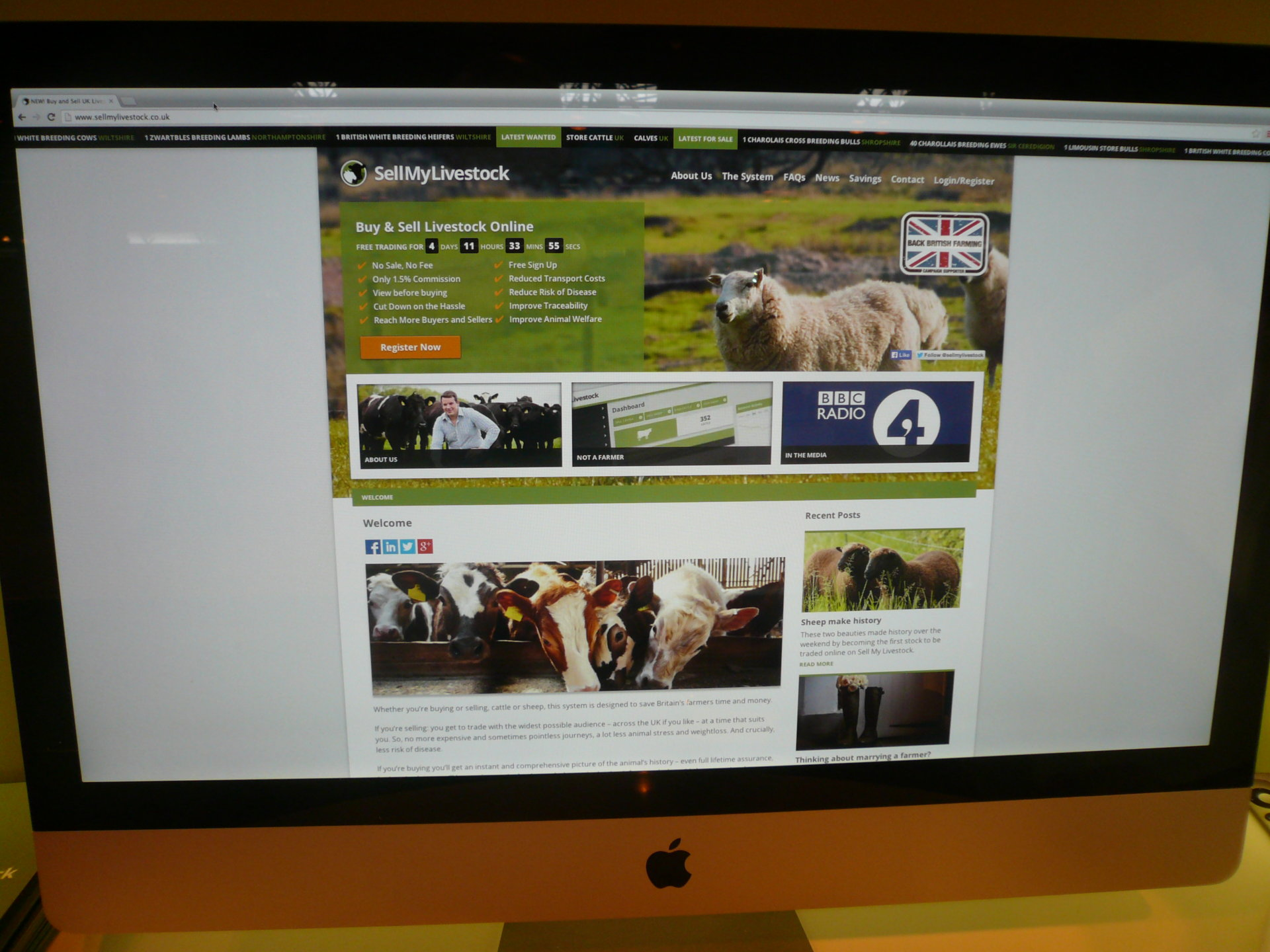 Sell My Livestock Blog   The Farming Forum