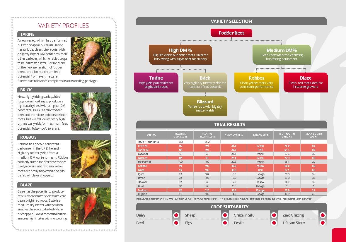 Fodder Beet Guide_Page_2.jpg