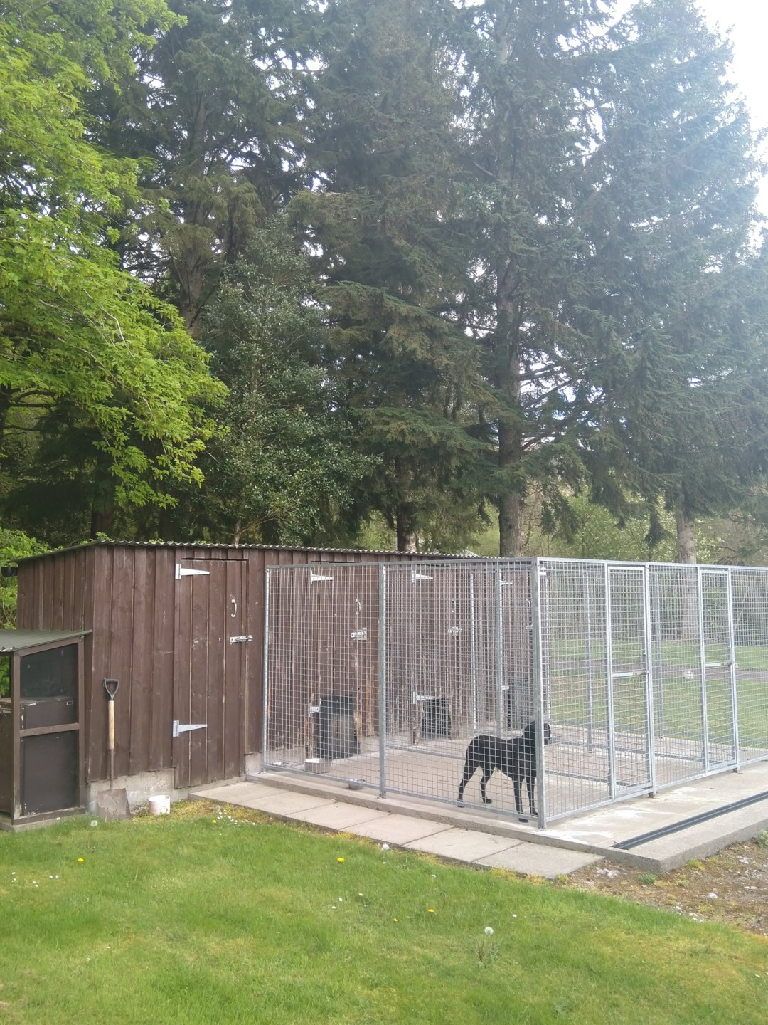 Dog kennel and run designs | The Farming Forum