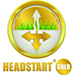 HEADSTART-GOLD-small.jpg