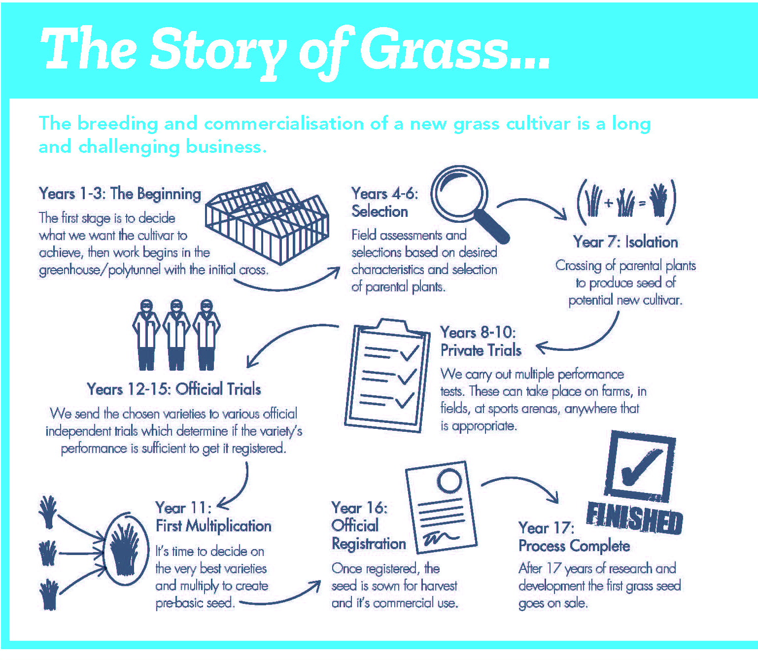 The story of grass.jpg