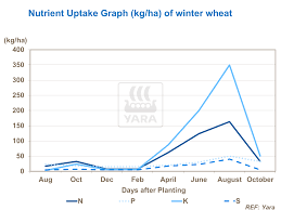Yara NPK demand wheat.png