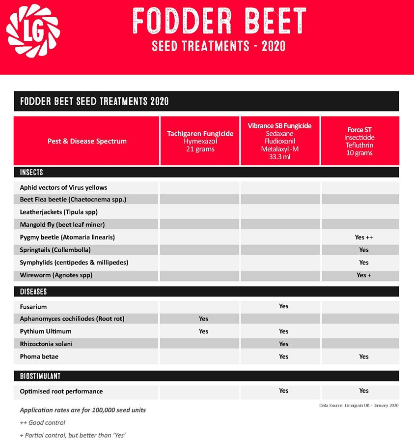 Fodder Beet seed treatment.jpg