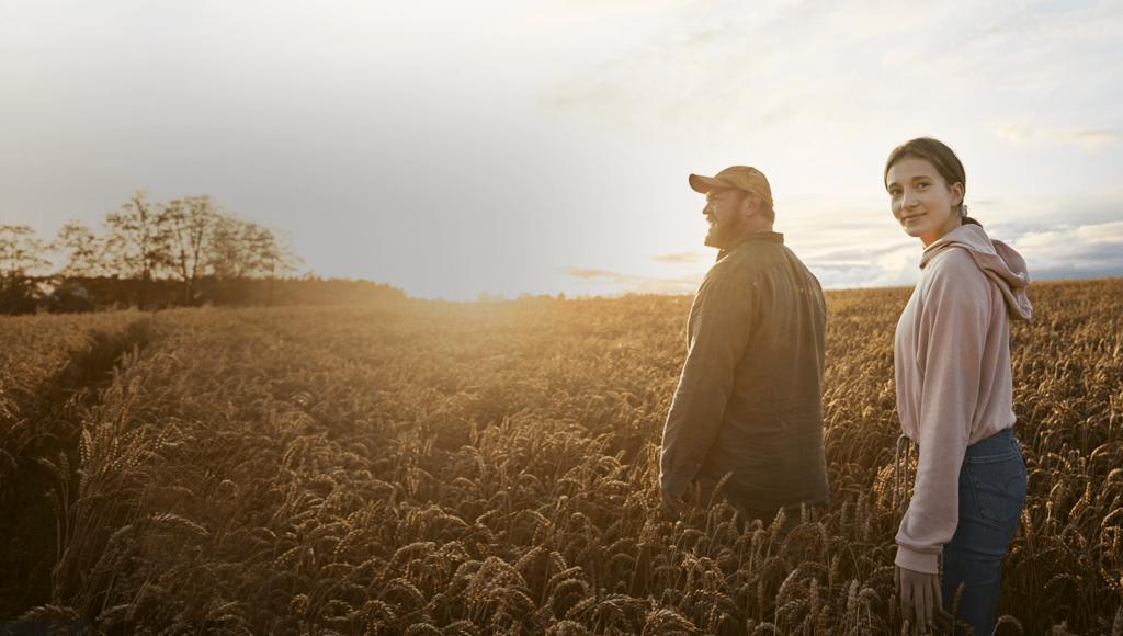 Improve your farm's nitrogen fertiliser efficiency
