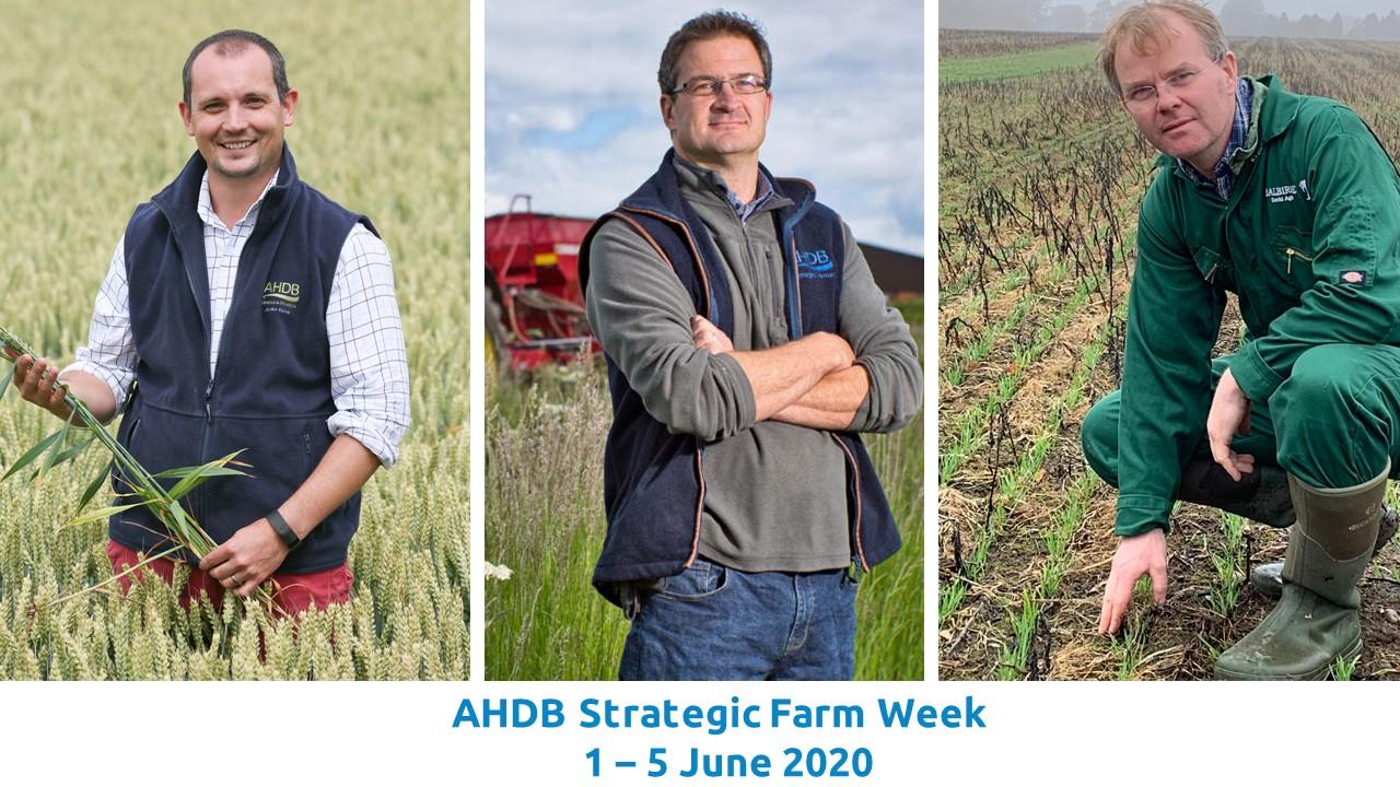 Strategic Farm Week Photo 2.jpg