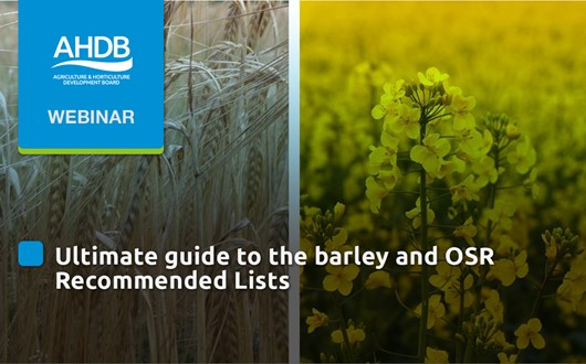 Ultimate guide to the barley and OSR Recommended Lists.jpg