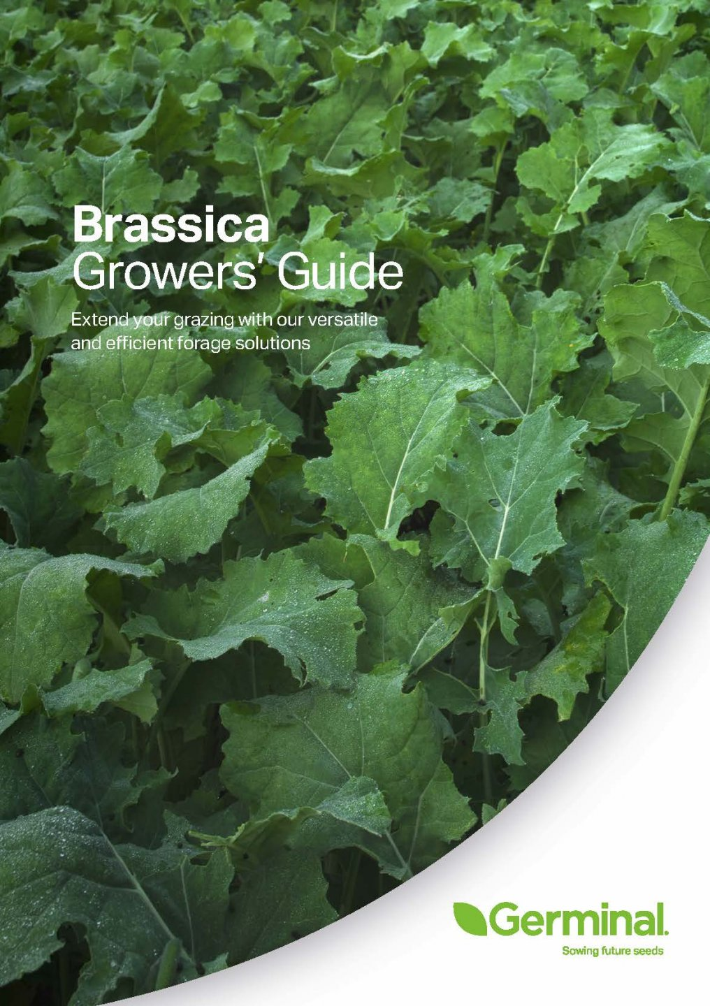 GGB_AGRI_107_Brassica_Growers_guide_2020_Page_01.jpg
