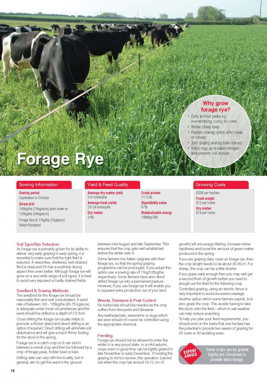 Humbolt Forage Rye_Page_1.jpg
