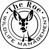 The Roe