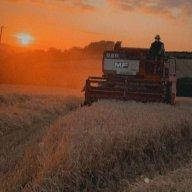Somerset Farmer
