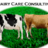 Dairy Care Consulting