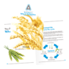 transparent-7-Steps-to-Wheat-Protectilon-Banner_200x200.png